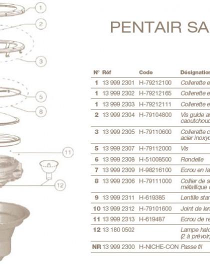 Collerette complète Acier Inoxidable pour Projecteur PENTAIR SAM