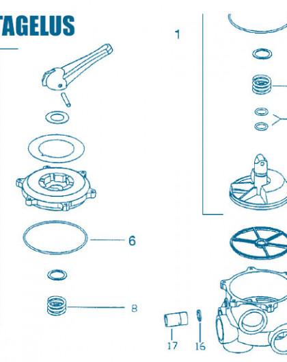Vanne Triton Tagelus - Num 1 - Boisseau complet 2 pouces