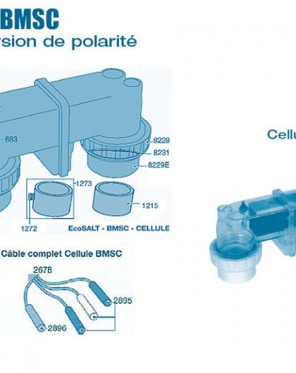 Electrolyseur Ecosalt BMSC inversion de polarité - Cellule - Num 682 - Cellule BMSC 20