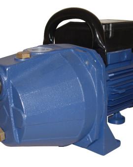 Pompe D'Arrosage De Surface 600W
