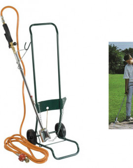 Kit désherbage avec flexible 2m avec détendeur et chariot