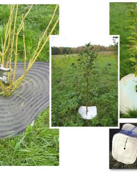 Biopaillage 100% biodégradable fertilisant 50 plaques