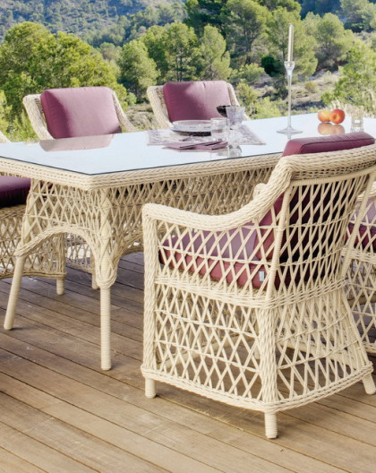 Salon de Jardin Table 220x110cm IVOIRE + 8 places